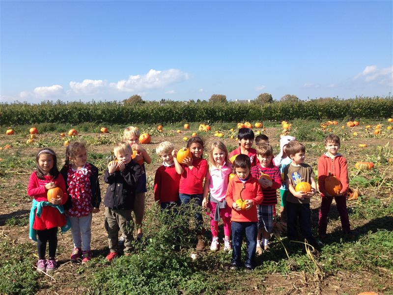 KINDERGARTEN SPENDS A DAY AT THE FARM
